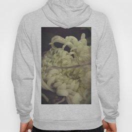 Romantic Chrysanthemum Hoody