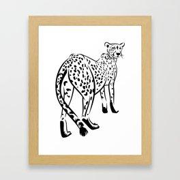 Сheetah Framed Art Print