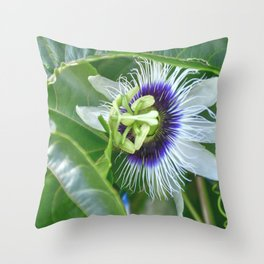 Passiflora - Passion fruit unique flower Throw Pillow