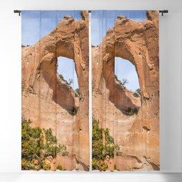 Window Rock Blackout Curtain