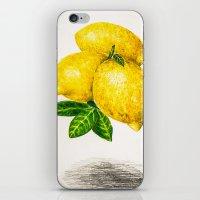 lemon iPhone & iPod Skins featuring Lemon by Peiting Tsai