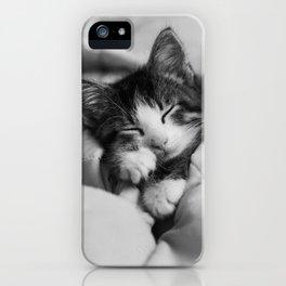 Snuggled Up Sleeping Kitten iPhone Case