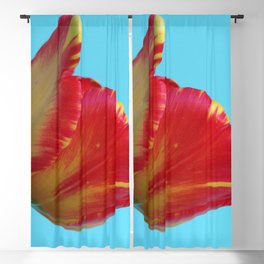 Profile of A Red and Yellow Tulip Blackout Curtain