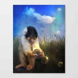 Curio Canvas Print