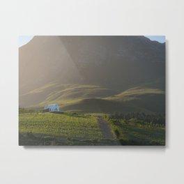 Idyllic wine estate in the hills of Hemel en Aarde valley | Travel photography South Africa Metal Print