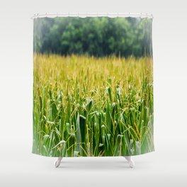 Cornfield Shower Curtain