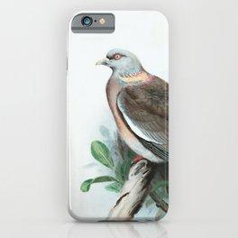 Pigeon Watercolor Bird Art iPhone Case