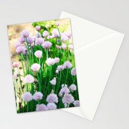 Purple Flowers in the Roanoke College Garden Stationery Cards