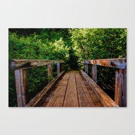 The Forest Bridge Canvas Print