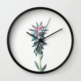 Flowering Succulent Wall Clock