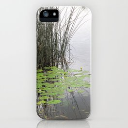 Lillypad tranquility iPhone Case