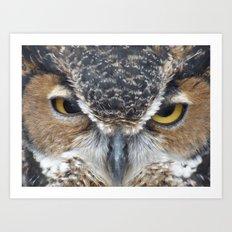 owl V Art Print