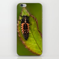 bug iPhone & iPod Skins featuring Bug by Wealie