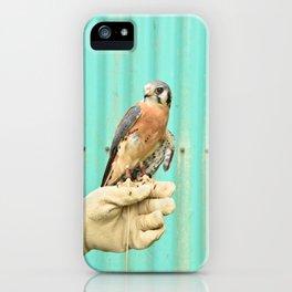 American Kestrel Falcon Bird Wildlife Northwest iPhone Case