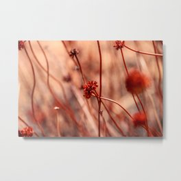 California Bloomin' Metal Print