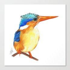 Kingfisher I Canvas Print