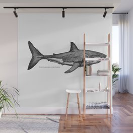 Carcharodon carcharias Wall Mural
