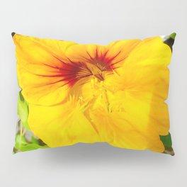 Beautifully edible Pillow Sham