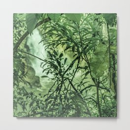 Jungle View at Iguazu National Park  Metal Print