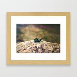 Slow Dream Framed Art Print