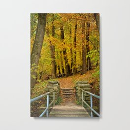 Hike In Autumn Woods Metal Print