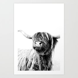 HIGHLAND CATTLE FRIDA Art Print