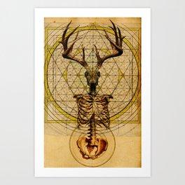 Anteocularis V Art Print