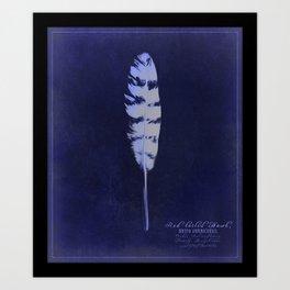 Ornithology Print-Redtailed Hawk Art Print