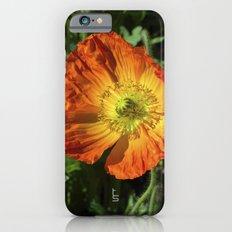 Orange Poppy II iPhone 6s Slim Case