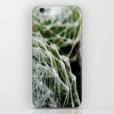 Leslie the Cactus  iPhone & iPod Skin