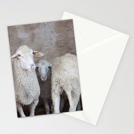 Sheep in a Natural Cave Stationery Cards