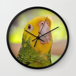 You Know I Am Cute Wall Clock