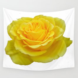 Beautiful Yellow Rose Closeup Isolated on White Wall Tapestry