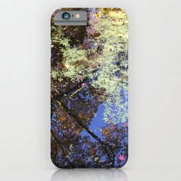 Japanese Maple Tree Reflections iPhone Case