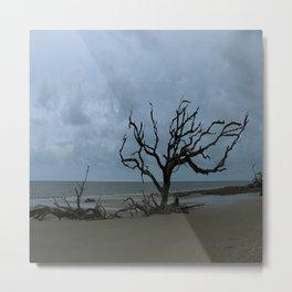 A Ghost Tree On Jekyll Island Beach Metal Print