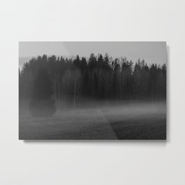 Foggy afternoon Metal Print