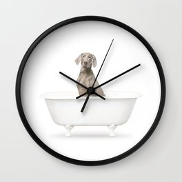 Weimaraner Dog in a Vintage Bathtub Wall Clock