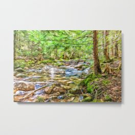 Swift river Metal Print