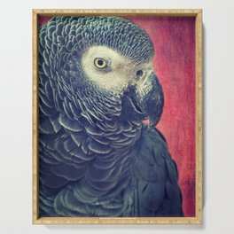 Gray Parrot Serving Tray