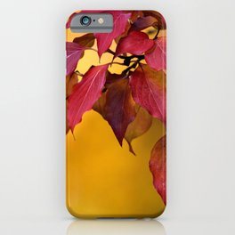 BRIGHT AUTUMN COLORS iPhone Case