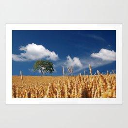 summer cereals sun Art Print
