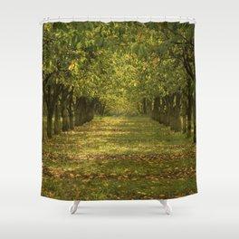 Hazelnuts in Oregon Shower Curtain