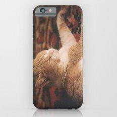 Frederic Slim Case iPhone 6s