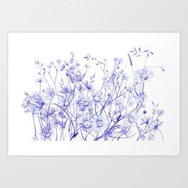 Daisies Field Art Print
