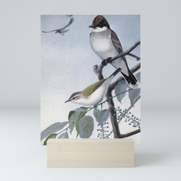 Scrapper the Kingbird, Redeye the Vireo1 Mini Art Print