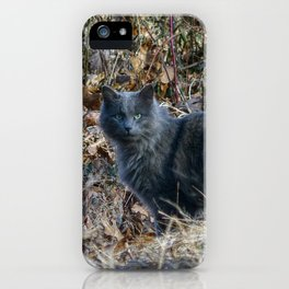 Cat in the Woods iPhone Case
