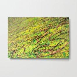 Natural vivid colors Metal Print