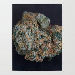 Jenny's Kush Medicinal Marijuana Poster