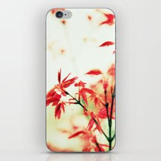 Japanese things 0343 iPhone & iPod Skin