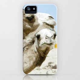 Daisy Camel iPhone Case
